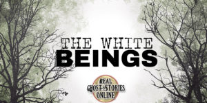 thewhitebeings